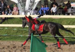 Езда, лежа поперек на шее лошади