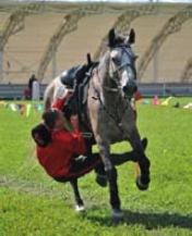 Пролаз под животом коня